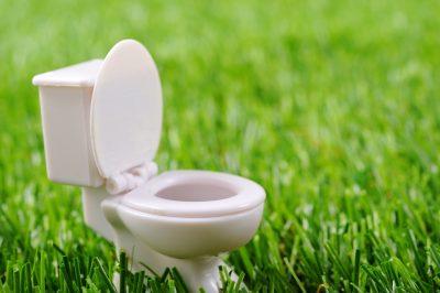 節水型トイレのイメージ エコ